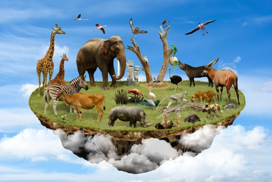 14788718 - floating island in the clouds with animals as symbol of environmental concept